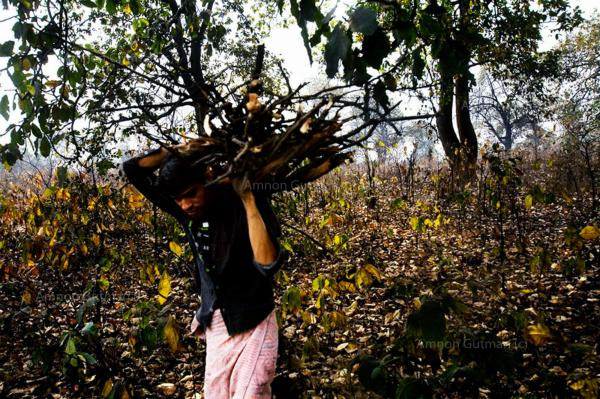A man carries wood back to his home, from the forest where a sponge plant was built in, Tarimal village, Chhatisgrah.