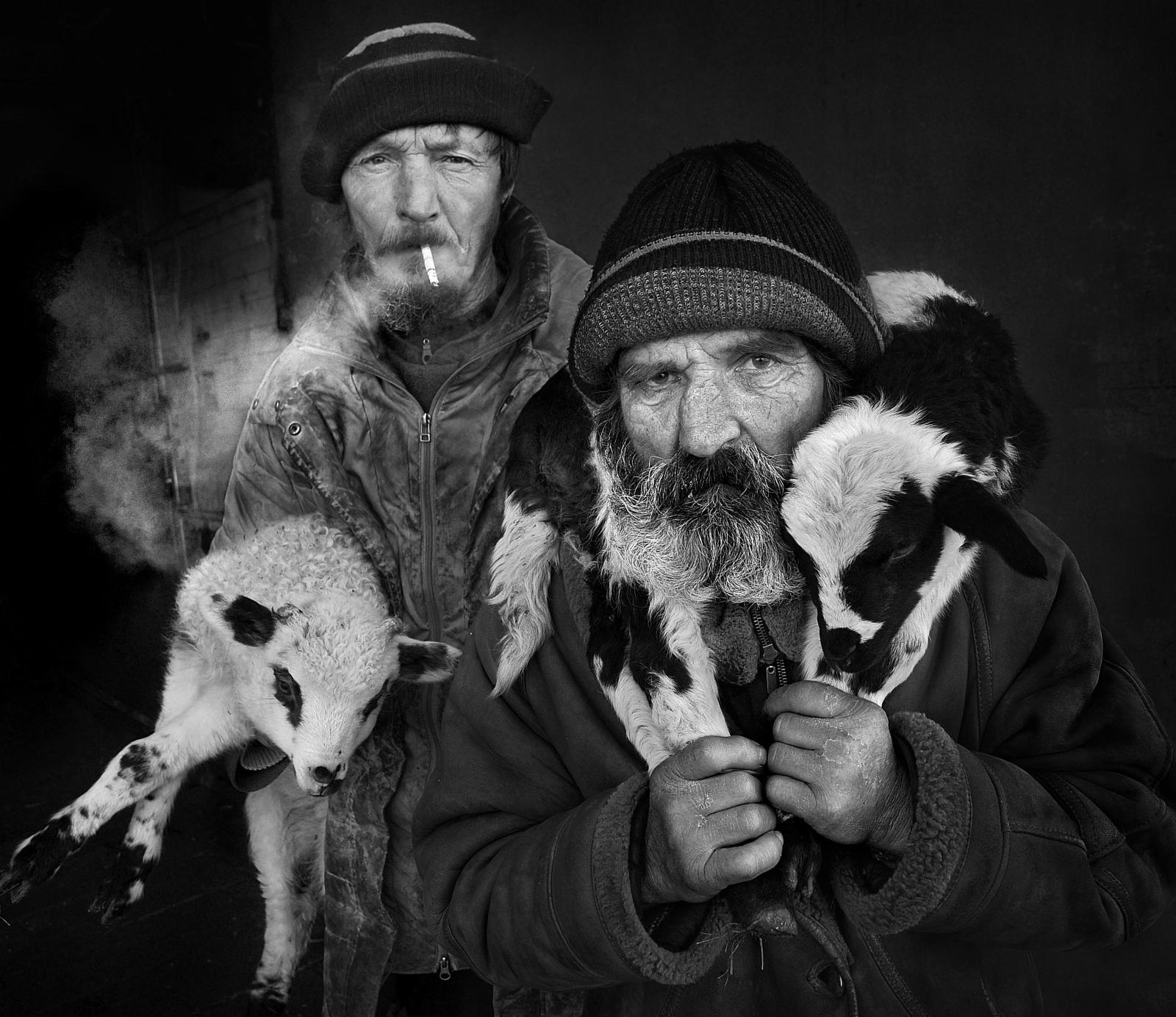 Photography image - Loading Shepherds_from_Transylvania_-1.jpg