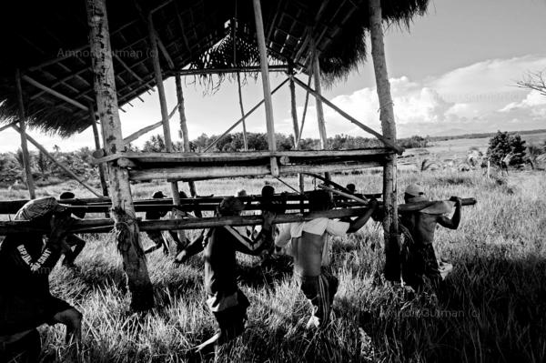 Ilaga members moving a deserted muslim shack near their fields, at the no mans land area between christian and muslim communities.