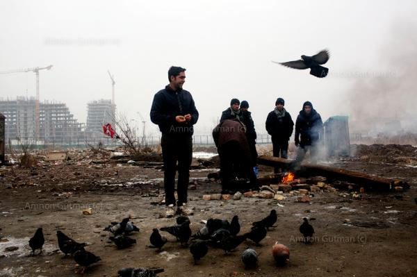 Refugees feeding bread crumbs to pigeons, near an empty train cart where they live in, at the backside of Belgrade train station.