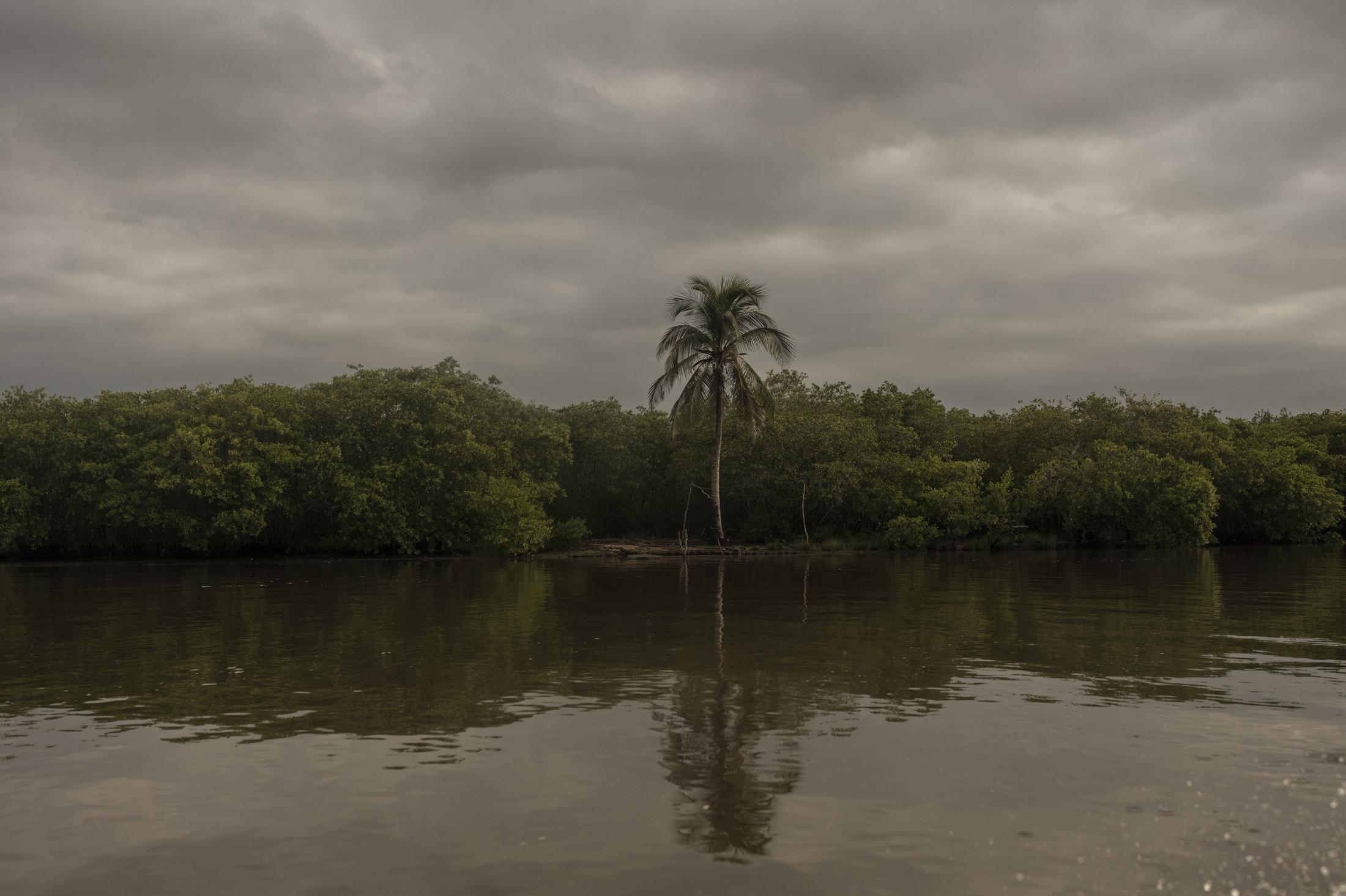 Paisaje del Sistema Lagunar de Alvarado, en él se encuentran diversas comunidades que viven de la pesca y la apicultura, sin embargo, los servicios básicos como electricidad e internet son nulos.