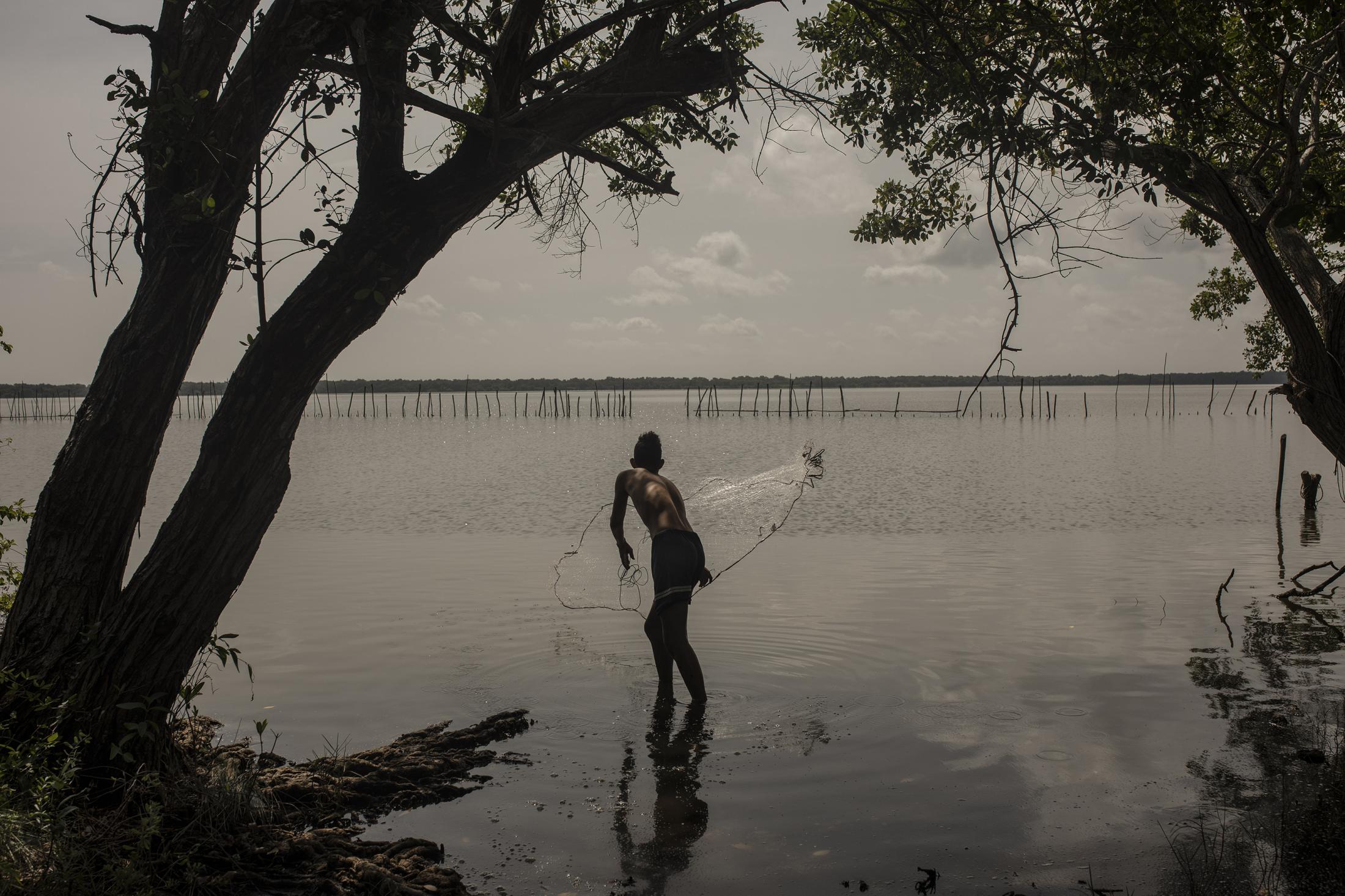 Brian Zamudio, 18 años, lanza una atarraya sobre la Laguna de Alvarado, durante su tiempo libre ayuda a sus padres a pescar para poder alimentarse o comercializar en el mercado de mariscos. Brian ha sido uno de los estudiantes afectados por la pandemia del Covid-19 al vivir en una comunidad sin energía eléctrica ni internet para poder realizar sus actividades académicas.