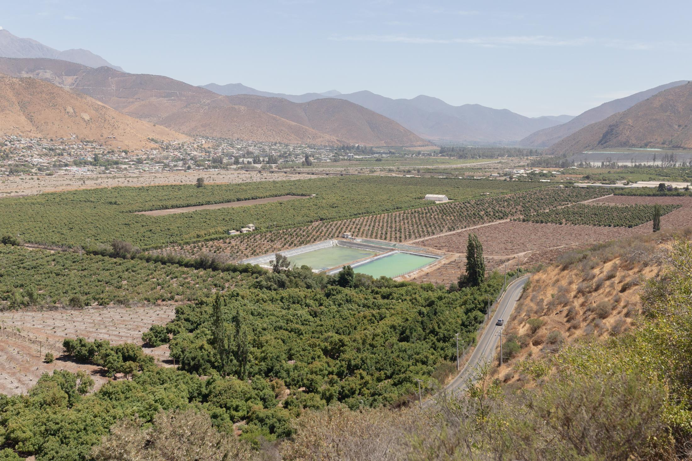 December, 19th, 2020. View of industrial avocado plantations with water accumulators in La Ligua valley as it passes through Cabildo. Between 600 and 2000 liters of water are needed to produce one kg of this fruit. The avocado market is mainly based on exports to the United States, Europe, China and Argentina.