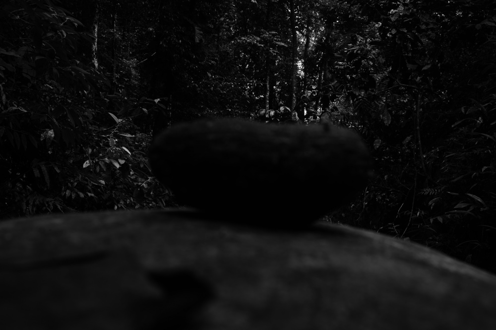 Art and Documentary Photography - Loading 1.JPG