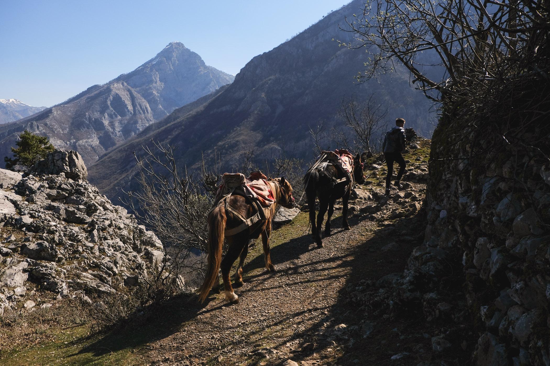 Fonsi Bikaj walks with two horses near his family's house in Kalsa, the hamlet where they spend the winter months, Kelmend region, Albania.