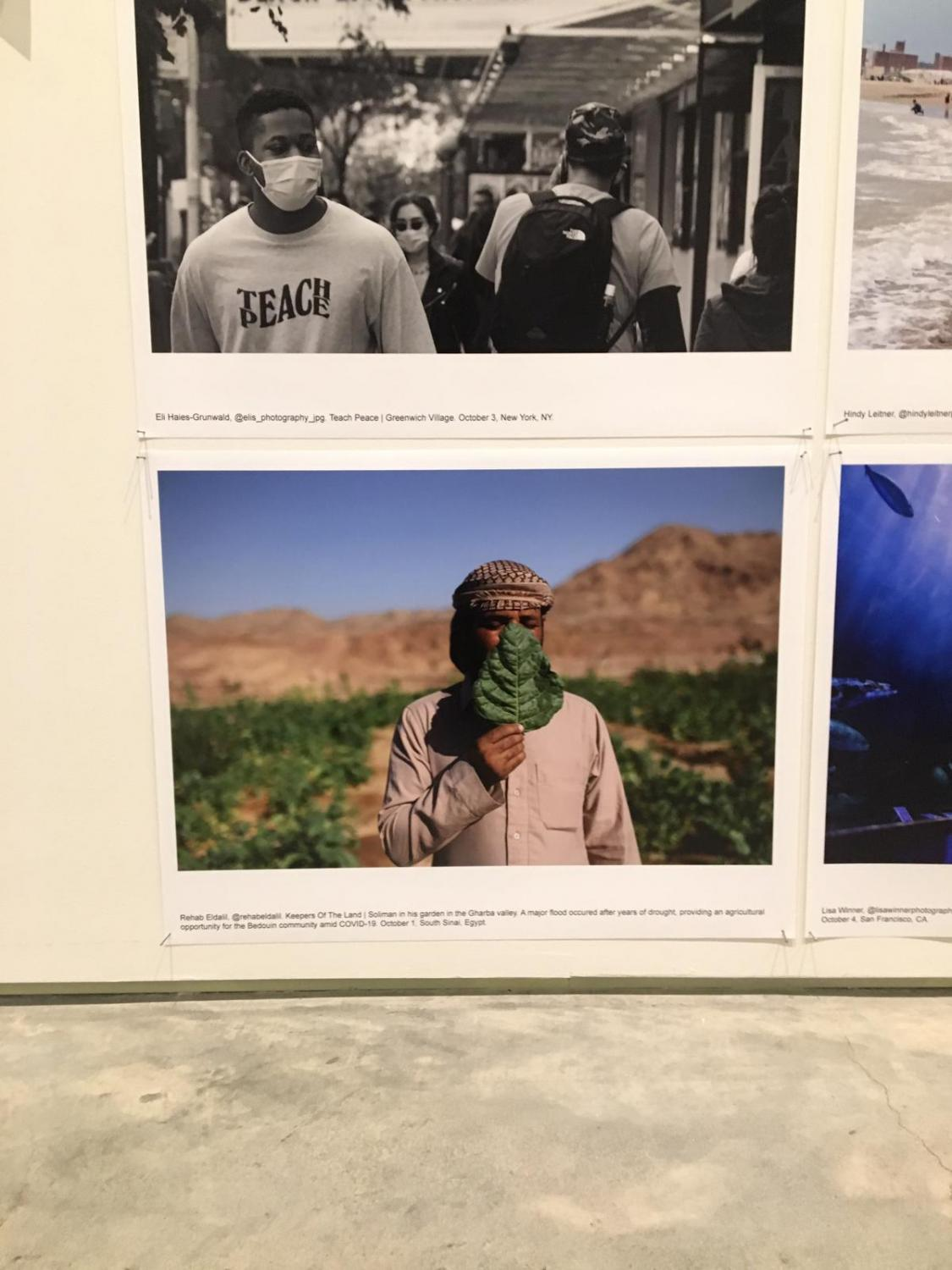 ICP Concerned Exhibition, New York, 2020 https://icpconcerned.icp.org/