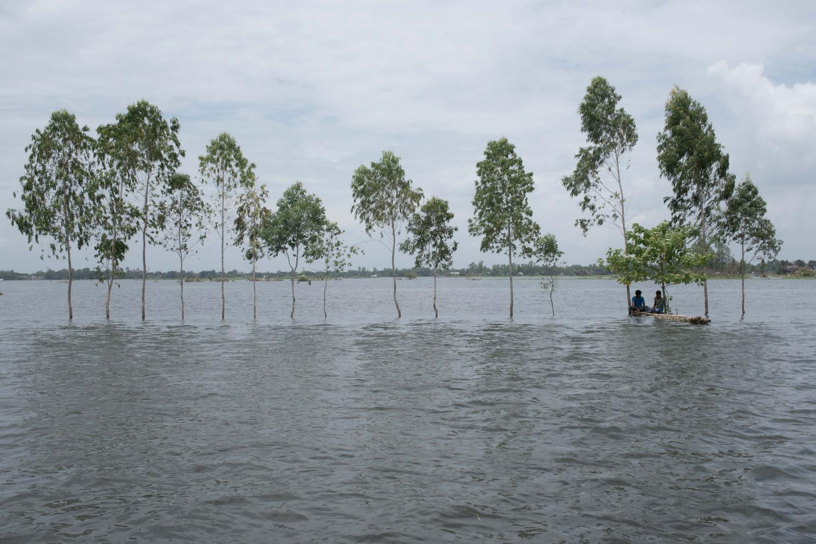 Photography image - Loading 20200811-Depth_Of_Flood14.jpg