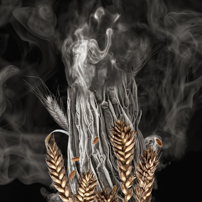 WHEAT SPROUT ON FIRE Wheat yields are decreasing with rising temperatures. At the same time, nutrient content will decrease in a hotter climate, a burden for developing nations. Crops are also threatened by drought.