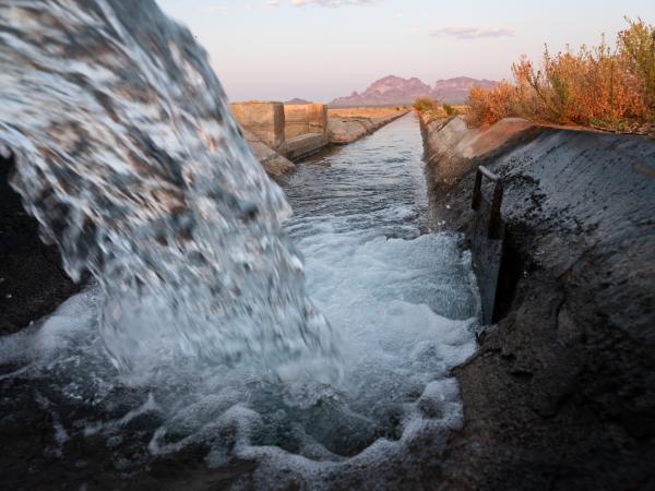 Bloomberg Businessweek: Irrigation Innovation