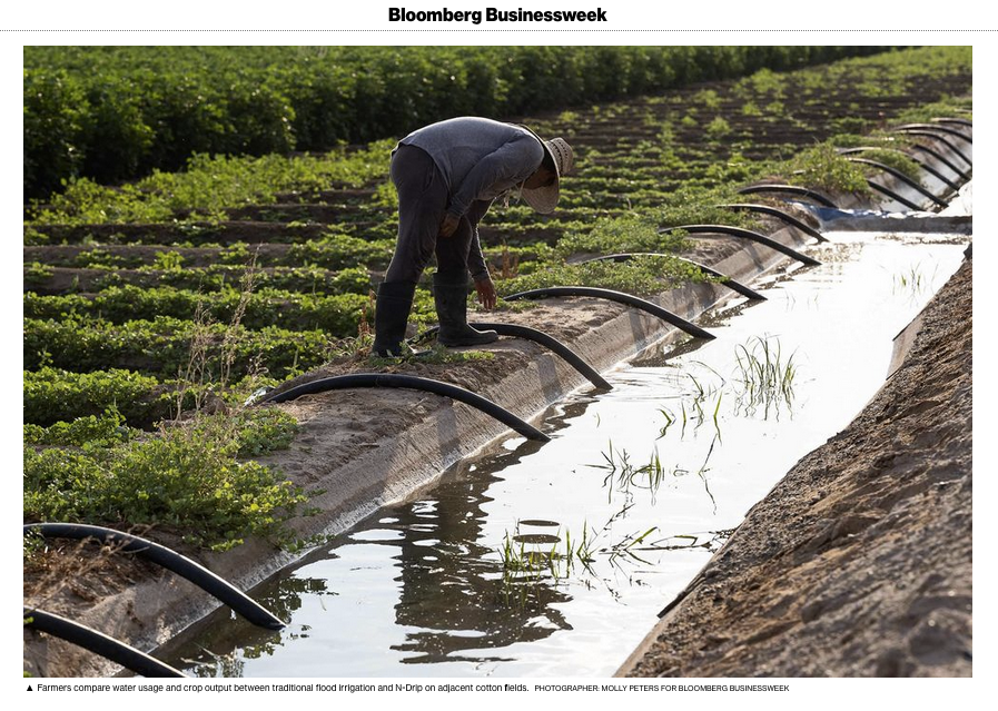 Art and Documentary Photography - Loading Bloomberg_N-Drip.png