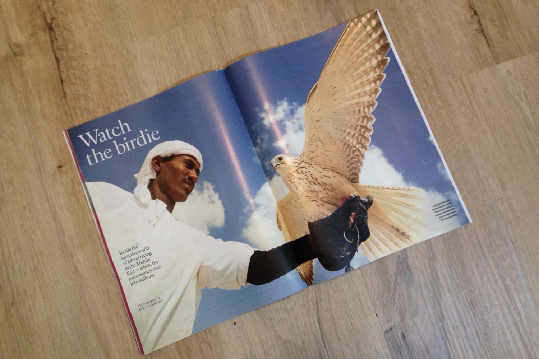 Photography image - Loading STMagazine-Falcons-1.jpg