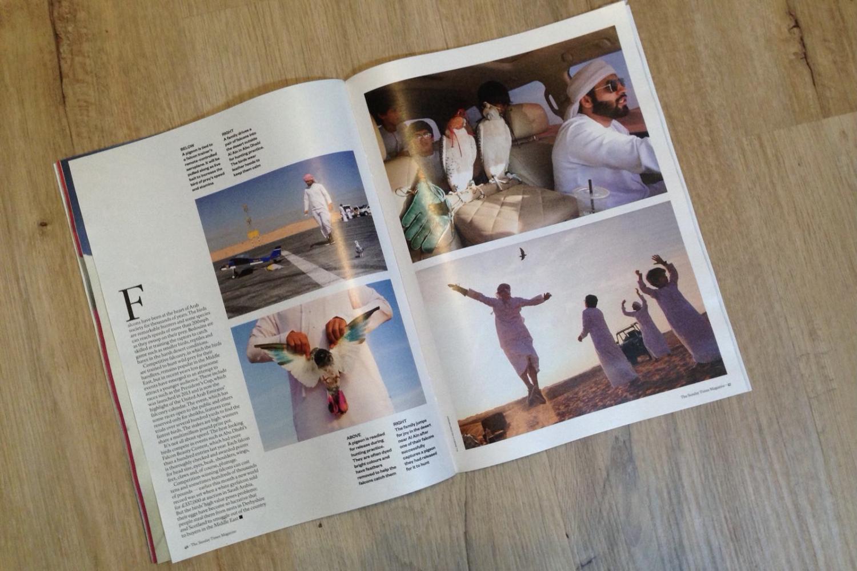 Photography image - Loading STMagazine-Falcons-2.jpg