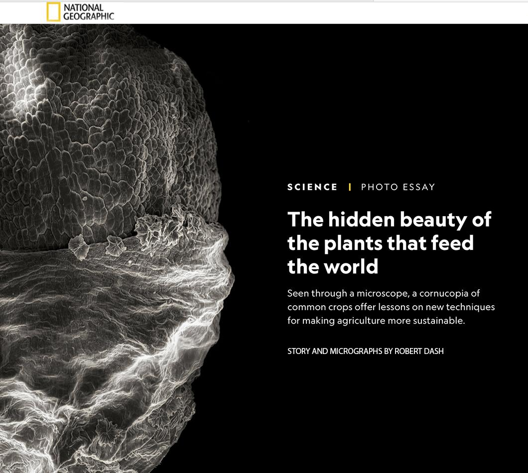 National Geographic Proof Feature, September 23, 2021