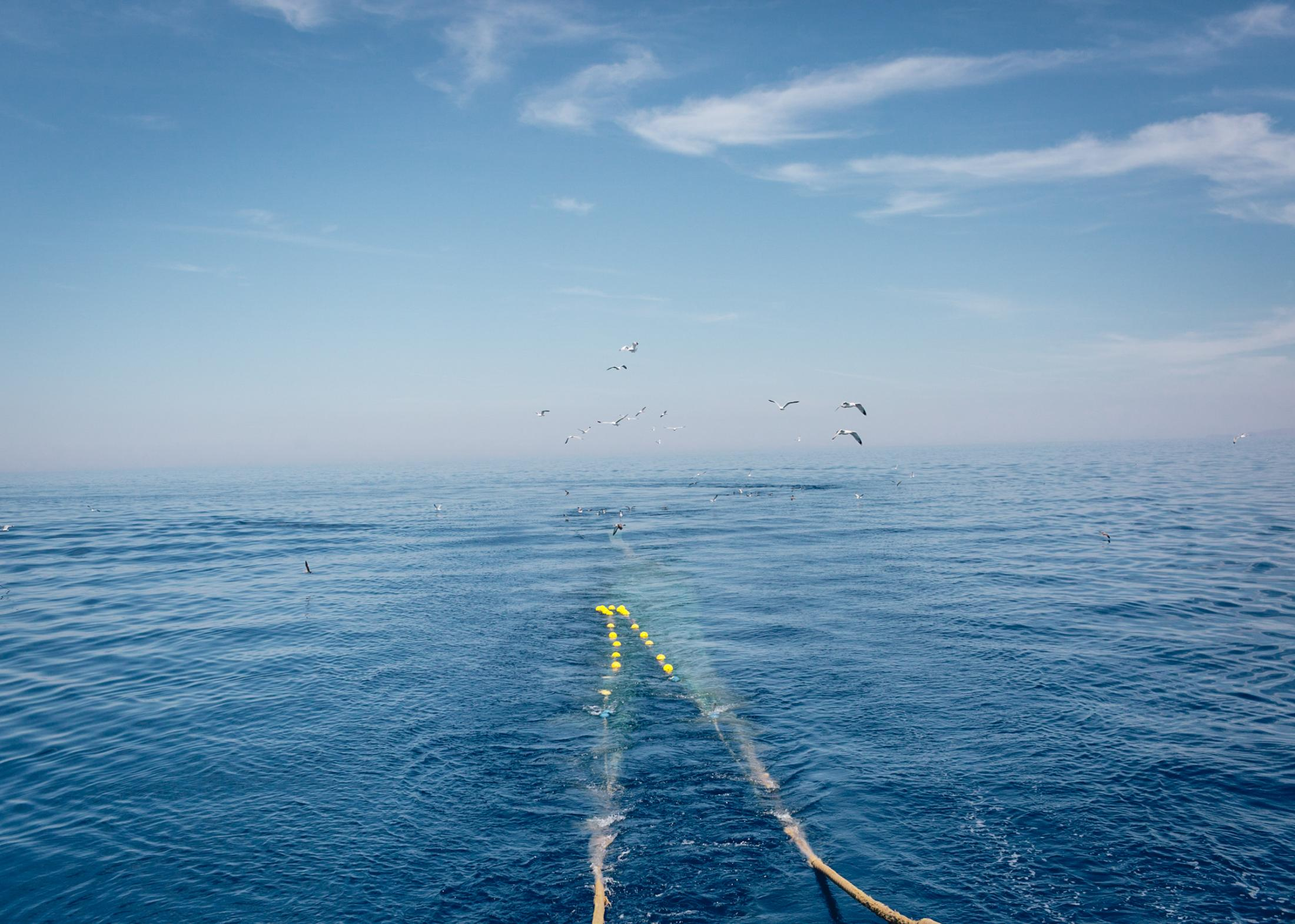 The net of a fishing boat is cast in the early morning.