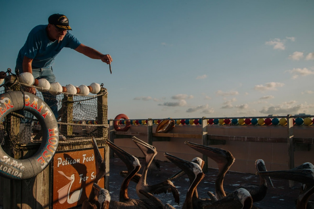 Art and Documentary Photography - Loading Florida_Eden_Isle_013.jpg