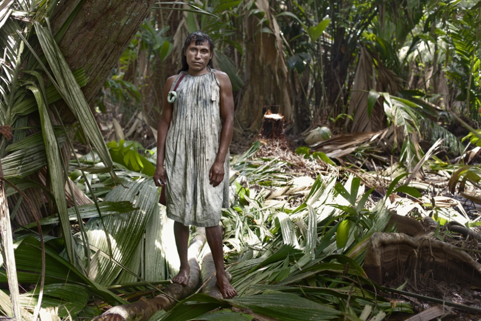 Andres Medina, a young indian transgender, as many other like him, has adopted woman role among the community and helps his family with the okumo chino harvest in the middle of the swamp´s jungles.