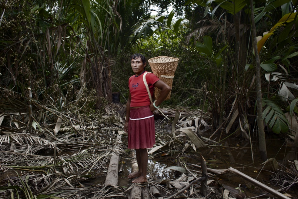As a result of their nomadic traditions, Warao people are used to stablish into the jungle for two to six months hunting and collecting goods. A young transgender is portrayed while collecting yuruma in the deep of the jungle.