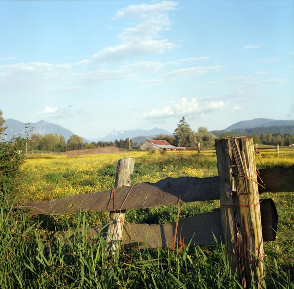 Art and Documentary Photography - Loading FarmField.jpg